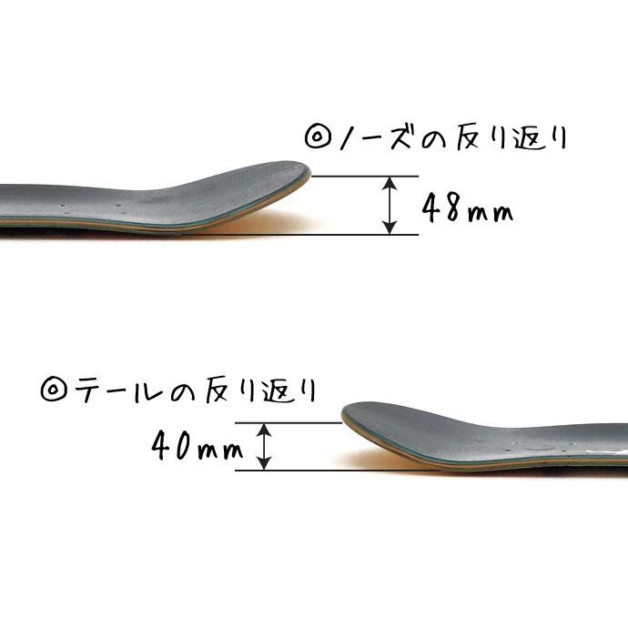 スケボーの前後 スケートボード ノーズ テール 前 後ろ ノーズとテールの形の違い 反り返り